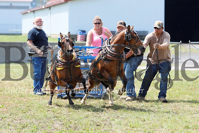 (USE FOR PRINT)  Randy Ealy(right) and Ron Haley lead Buck Troup's minature horse team of Barney(left) and Frank to a win in their size class. The duo pulled a 2,500 pounds of cinder blocks to win. The Butler Fair wrapped up its final day Saturday. Seb Foltz/Butler Eagle