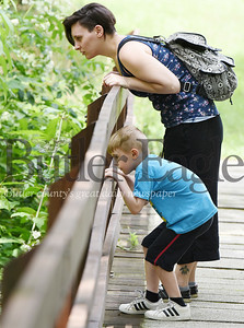 Harold Aughton/Butler Eagle: Joanna Webb of Meridian, and her son, Elliottt, 6, enjoyed identfing dragpmflies, butterflies and sunfish while on their walk through Preston Park, Monday afternoon. Dragonflies, butterflies, and sunfish