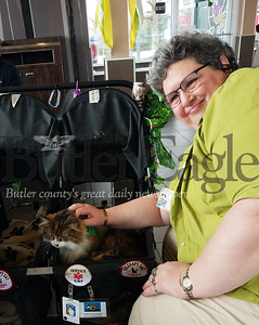 Elaine Zalewski pets her therapy cat Autumn in the stroller Zalewski uses to transport her two cats to nursing homes and rehabilitation facilites; PHOTOS BY ERIC FREEHLING