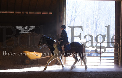 39701 Glade Run's equine program needs a new riding surface, and Leadership Butler Co. is raising all the money to provide it