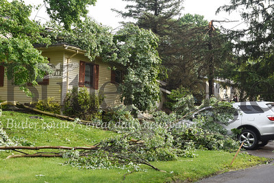 Harold Aughton/Butler Eagle: Heavy winds brought down trees in the 100 block of 3rd street in Evans City Tuesday, May 28.