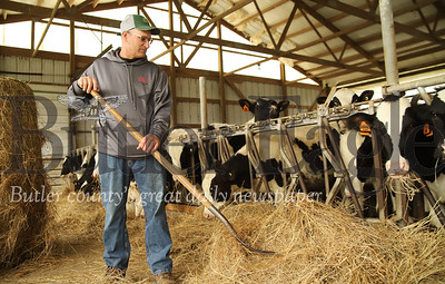 Leroy Bergbigler shovels hay closer to a cattle pen on his family dairy farm. Seb Foltz/Butler Eagle 05/14/20