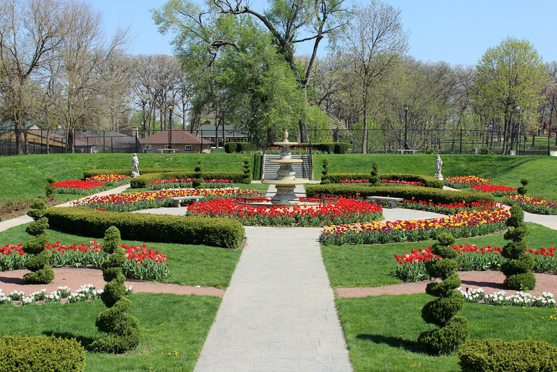 """Tulips in Bloom at Sunken Gardens, Phillips Park, Aurora, Illinois"" - Daily Photo - 05/30/13<br /> <br /> Thanks for all of the positive feedback on the robin's nest!"