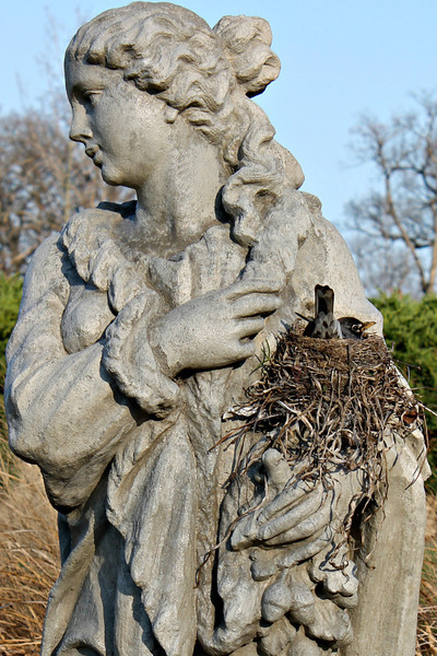 """""""Robin's Nest at Sunken Gardens, Aurora, Illinois"""" - Daily Photo - 05/29/13<br /> <br /> The way that the statue is holding the nest caught my eye, couldn't resist!  <br /> <br /> Thanks for all of your comments and encouragement."""