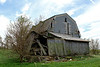 """Barn on a back road to Ottawa, Illinois"" - Daily Photo - 07/09/13<br /> <br /> My daughter was very bored, but hope you enjoy!"