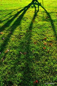 """""""Life is short, God's way of encouraging a bit of focus"""".  ~Robert Brault 11/29/09"""