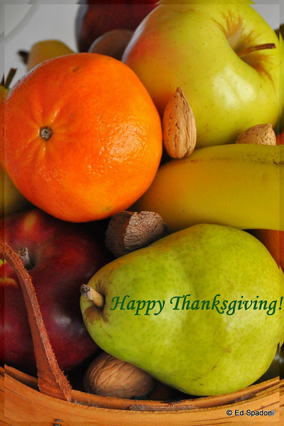 """To all my friends in the Daily Photos Community -<br /> I hope that in this day, and all that follow, you find ample reasons to give thanks.  <br /> 11/26/09<br /> """"As we express our gratitude, we must never forget that the highest appreciation is not to utter words, but to live by them"""".  ~John Fitzgerald Kennedy"""