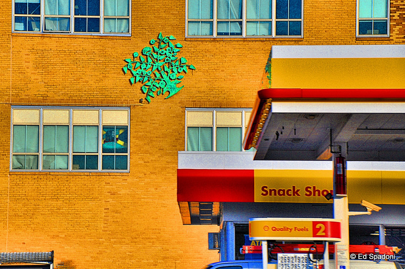 Cityscape: Home<br /> 11/18/09