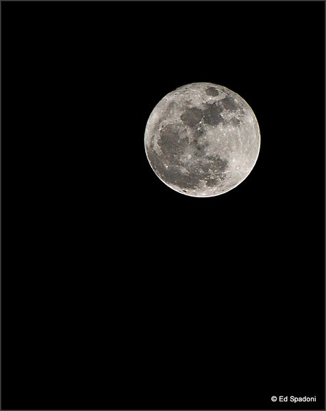 3/20/2011<br /> Last Night's Perigee Moon