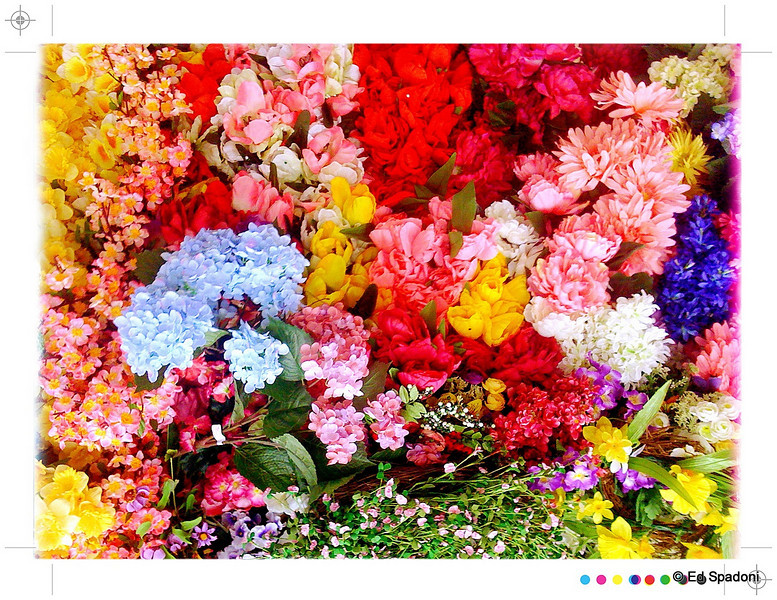"3/09/2011<br /> Spring has arrived!<br /> <br /> In the silk flower aisle, that is.  While I've been admiring all of your beautiful flower shots, we're now in ""mud"" season, with not a bloom in sight.  So these will have to suffice for now.<br /> <br /> ""Sitting quietly, doing nothing, spring comes, and the grass grows by itself"" Zen Proverb<br /> <br /> Thanks for all the comments on yesterdays ""mask""."