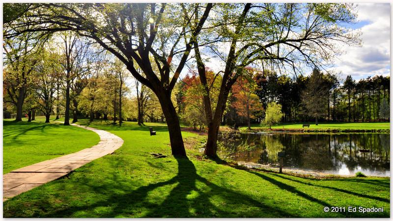 Light and shadows<br /> <br /> POTD 5-7-2011