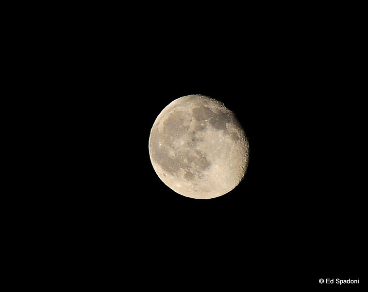 "3/19/2011<br /> (Near) Full Moon, Henderson, Nevada, 2010<br /> <br /> Tonight, the full moon will be the closest it's been in it's orbit to earth in almost 20 years.  This perigee moon will be a great opportunity for photogs to make some ""moon shots"".<br /> <br /> For more information and some how-to tips, please visit our new post:  <a href=""http://wp.me/pasxa-aL"">http://wp.me/pasxa-aL</a>"
