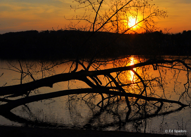 """""""The sky broke like an egg into full sunset and the water caught fire."""" <br />  Pamela Hansford Johnson <br /> 4/24/2010"""