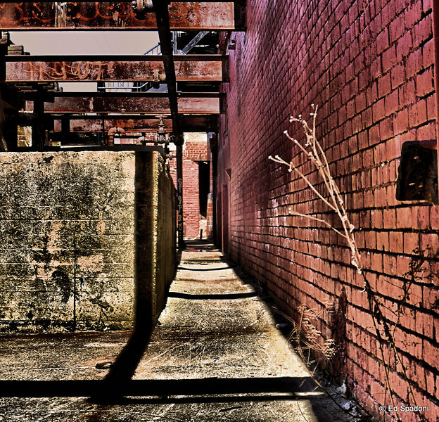 This alley lies between an abandoned warehouse and some very old railroad tracks.<br /> 4/9/2010