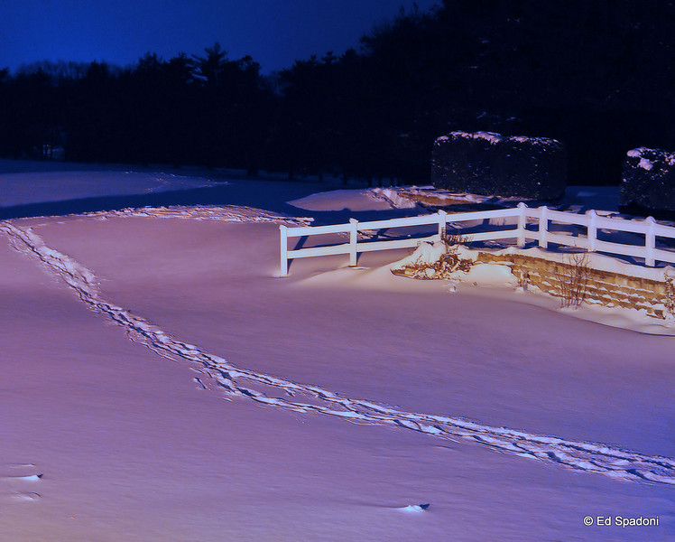 """""""January brings the snow, makes our feet and fingers glow"""".  Sara Coleridge <br /> 1/4/2010"""