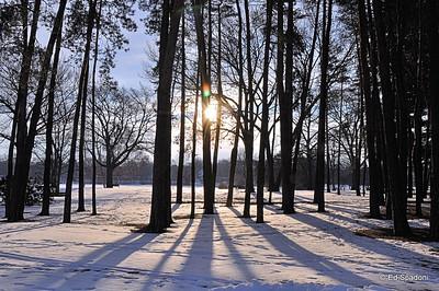 """Good morning sunshine!"" 1/17/10"