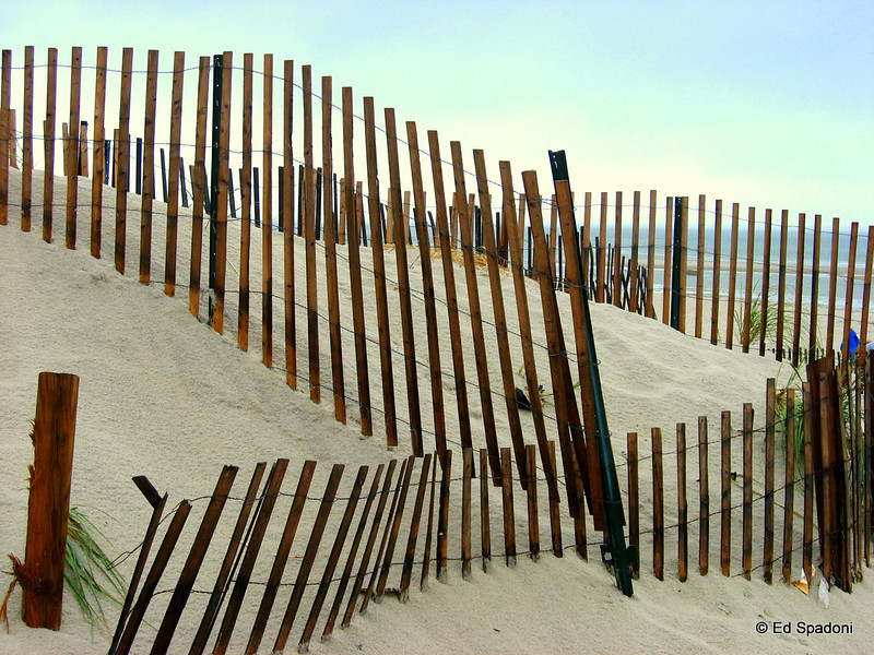 Beach Fences<br /> 8/21/2010