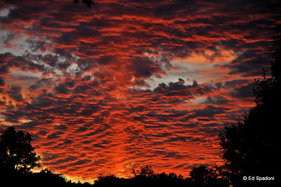 Fire in the sky 9/14/09 -2 Second of two today (I couldn't pass up this sunset).