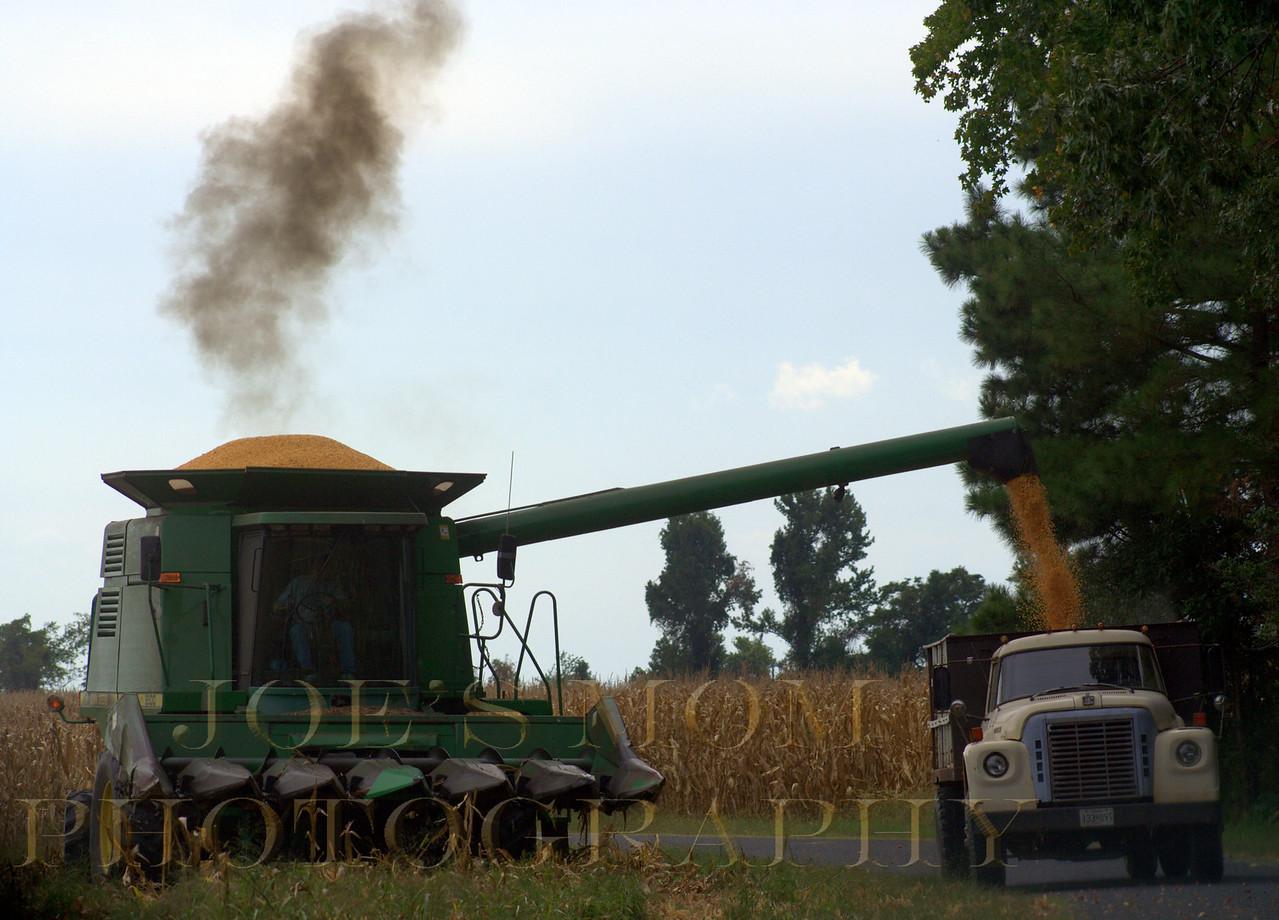 Harvest Time!.