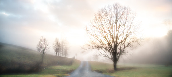 Jan 15 - The Morning Fog Is Lifting