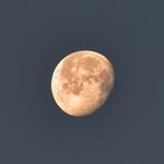 CAW_3179-7x5-Moon