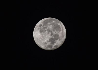 NEA_8620-7x5-Moon