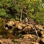 CAW_2484-7x5-Trail