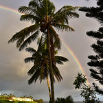 CAW_0345-7x5-Rainbow