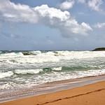 CAW_0594-7x5-Surf