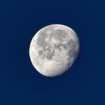 CAW_3178-7x5-Moon