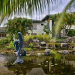CAW_2825-7x5-Fountain-Dolphins