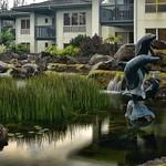 CAW_2822-Fountain-Dolphin