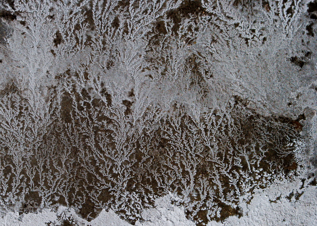 1/6   Winter Patterns