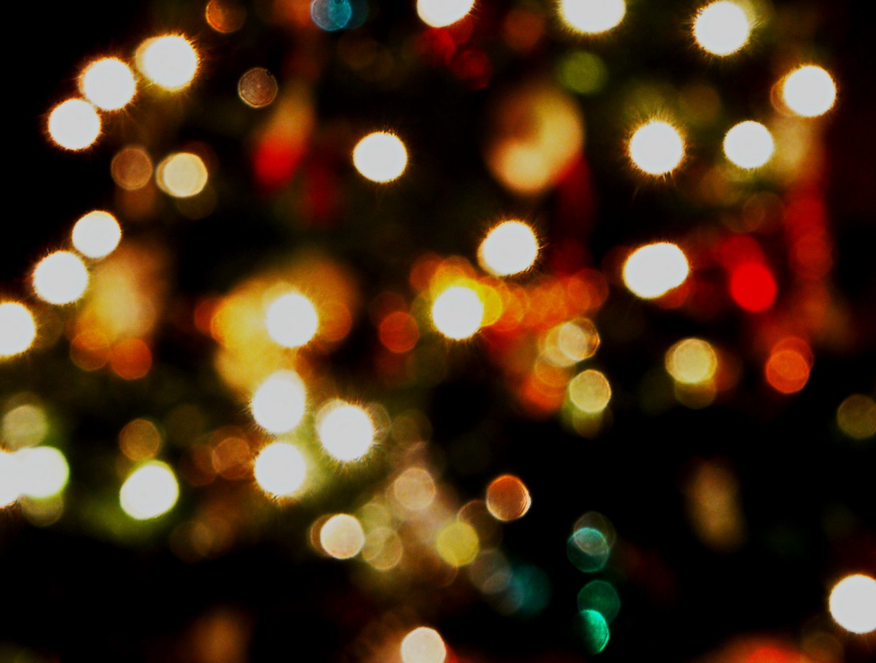1/2   Christmas Lights Bokeh