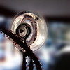 3/15   Suction Cup Reflections