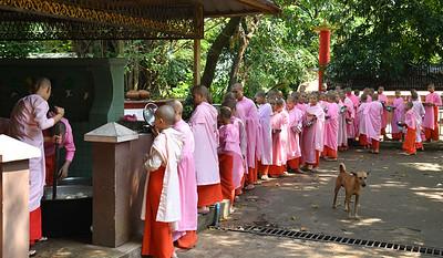 MYA_7170-Nuns waiting for lunch