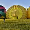 NEA_7462-Pano-Crop-Balloons