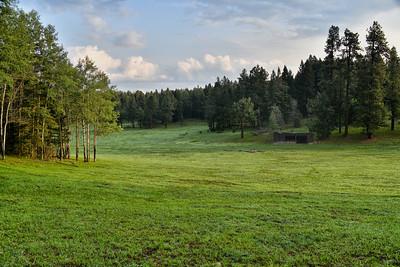 NEA_5052-Meadow