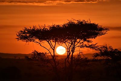 NEA_3798-Sunset
