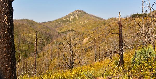 NEA_7108-Mills Canyon