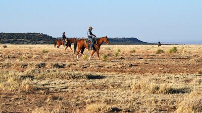 NEA_3768-Cowboys