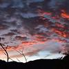 NEA_6625-Pano-Crop-Sunrise