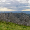 NEA_0113-Pano-Crest Trail