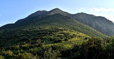 NEA_5428-Baylor Peak