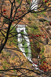 NEP_2139-Waterfall-Nepal