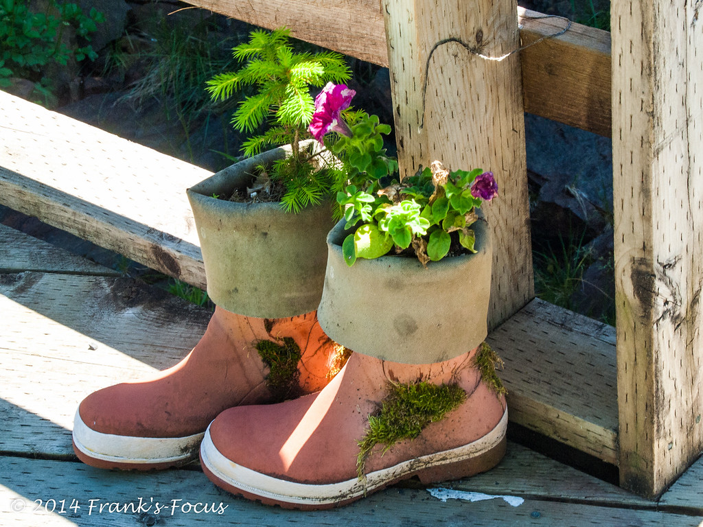 February 10, 2017 -- Boots Made for Planting