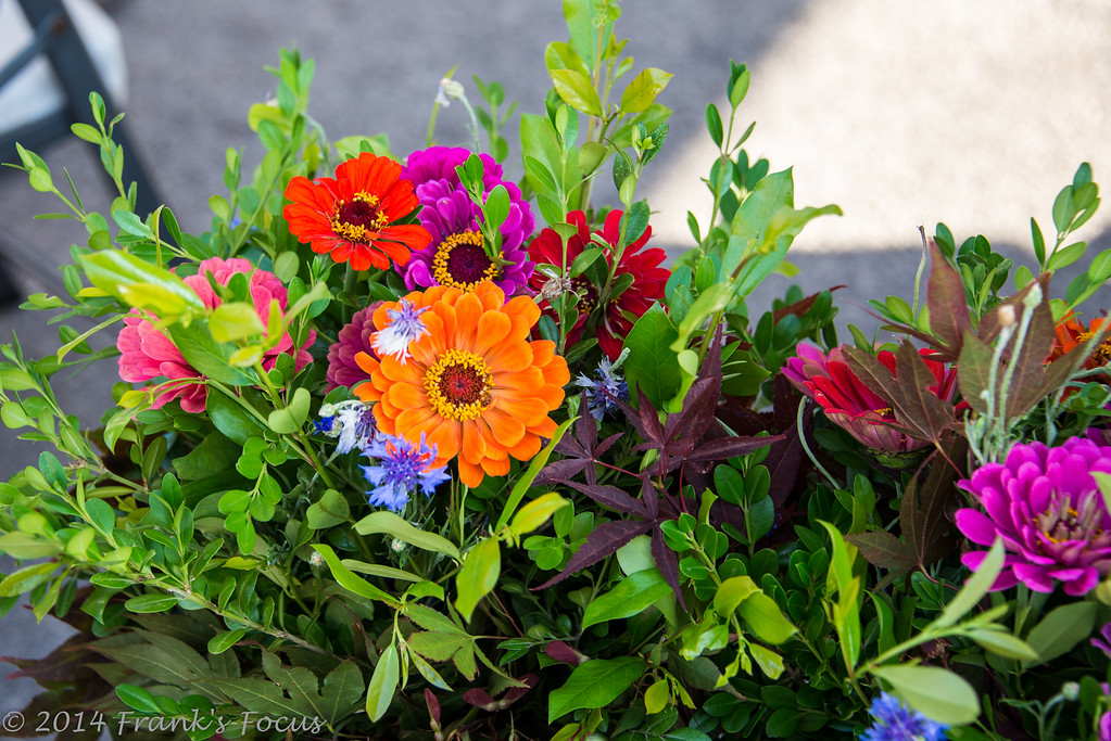 Thursday, July 9, 2015 -- Floral Display