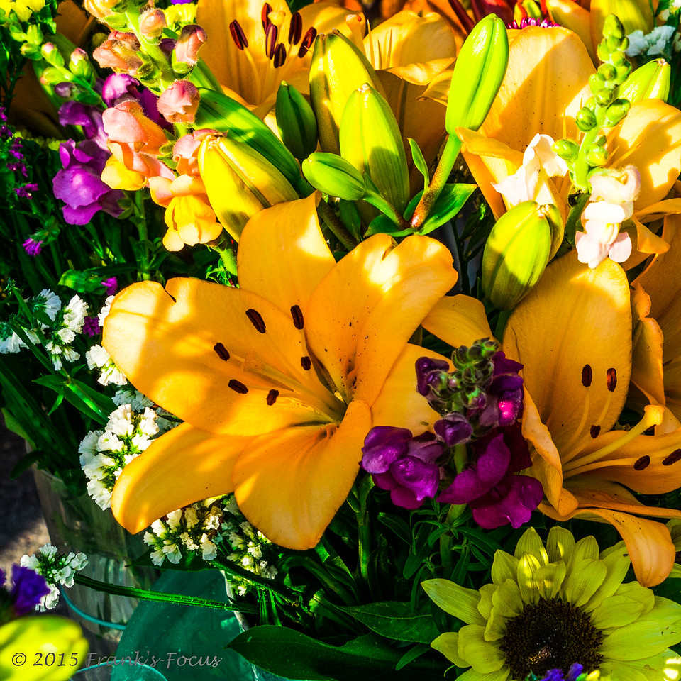 Sunday, May 10, 2015 -- Happy Mother's Day