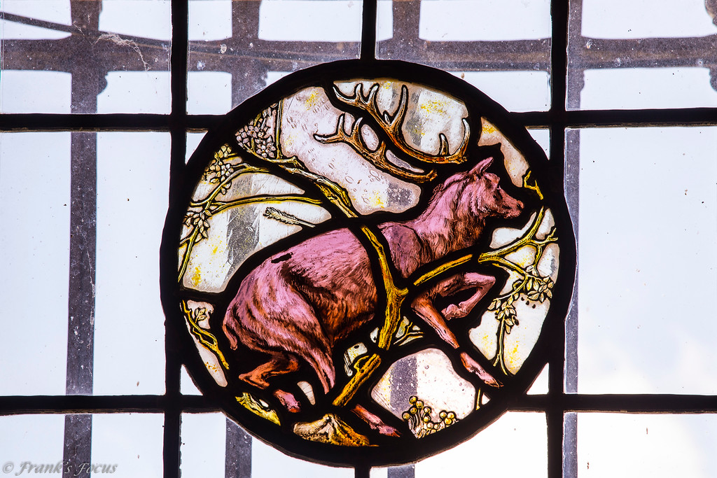 """.<br /> Stag Deer in stained glass - one of the many stained glass art pieces in Marland Mansion in Ponca City, Oklahoma.  View of the exterior of the mansion can be viewed here -- <a href=""""http://smu.gs/2aM6OyZ"""">http://smu.gs/2aM6OyZ</a><br /> <br /> Throughout the mansion are many examples of E.W.'s love for hunting and dogs and horses. The imported stained glass windows depict English hunting scenes.  Mr. Marland loved his hounds and had a kennel of hunting dogs he used for fox hunts. His love for his canine friends is evidenced throughout the house and its furnishings.  His chosen décor was intended to accent the comfortable, hunting-lodge feeling in many of the rooms."""