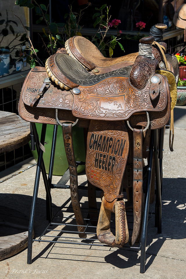 August 11, 2016 -- Saddle Up